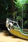 Tree Boat in Tigre